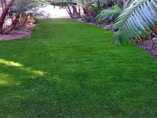Artificial Grass Photos: Installing Artificial Grass Sale Creek, Tennessee Lawns, Backyard Designs