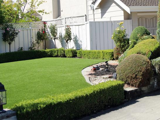 Artificial Grass Photos: Lawn Services Darden, Tennessee Home And Garden, Front Yard Landscaping Ideas