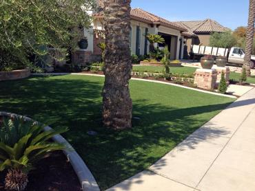 Artificial Grass Photos: Lawn Services Estill Springs, Tennessee Backyard Playground, Front Yard Landscape Ideas