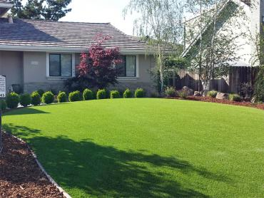 Artificial Grass Photos: Lawn Services Iron City, Tennessee Gardeners, Landscaping Ideas For Front Yard
