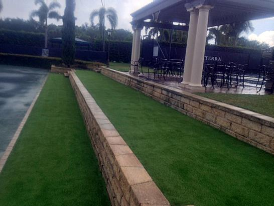 Artificial Grass Photos: Outdoor Carpet Doyle, Tennessee Landscape Ideas, Commercial Landscape