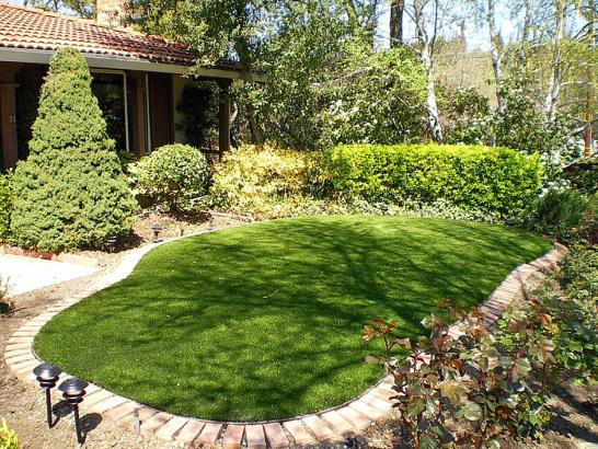 Artificial Grass Photos: Outdoor Carpet Henderson, Tennessee Backyard Deck Ideas, Backyard Design