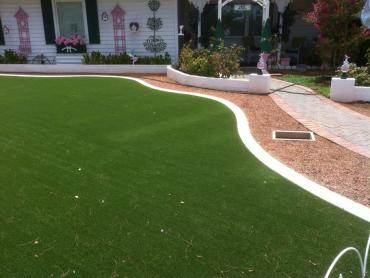 Artificial Grass Photos: Outdoor Carpet Tennessee Ridge, Tennessee Roof Top, Front Yard Design