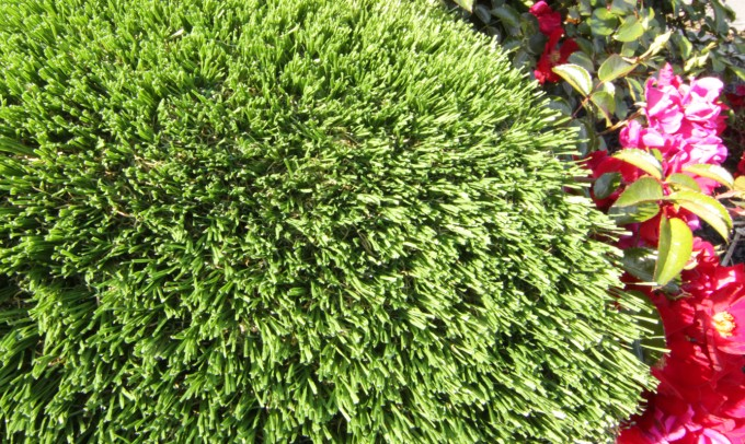 Hollow Blade-73 syntheticgrass Artificial Grass Nashville, Tennessee