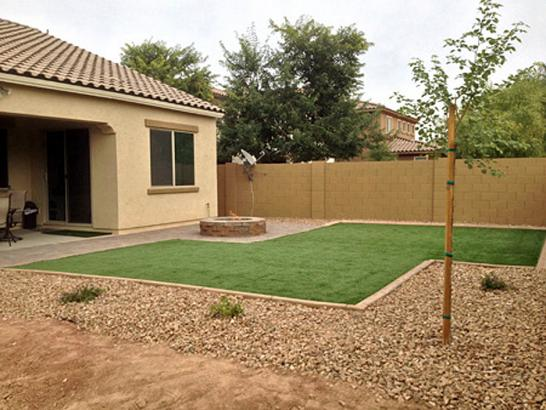 Artificial Grass Photos: Plastic Grass Cleveland, Tennessee Landscape Photos, Backyard Designs