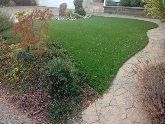 Artificial Grass Photos: Plastic Grass Powells Crossroads, Tennessee Landscaping Business, Backyard Design