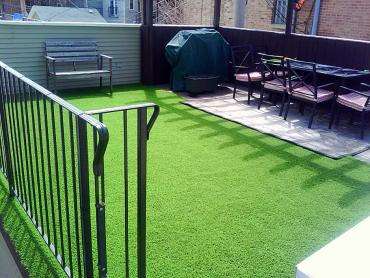 Artificial Grass Photos: Synthetic Grass Cost Dodson Branch, Tennessee Home And Garden, Backyard Garden Ideas