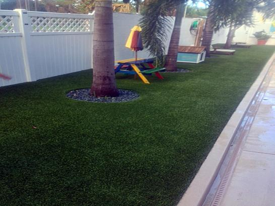 Artificial Grass Photos: Synthetic Grass Cost Lawrenceburg, Tennessee Design Ideas, Small Backyard Ideas