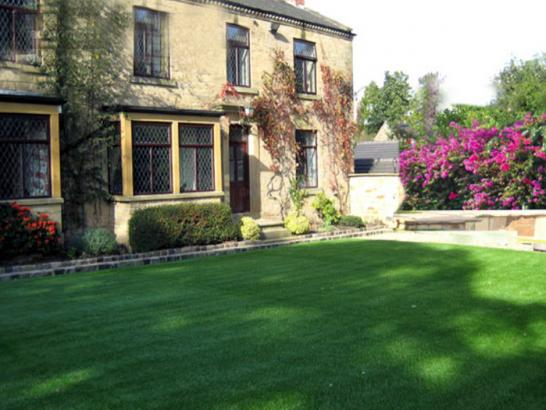 Artificial Grass Photos: Synthetic Grass Monterey, Tennessee Backyard Playground, Front Yard