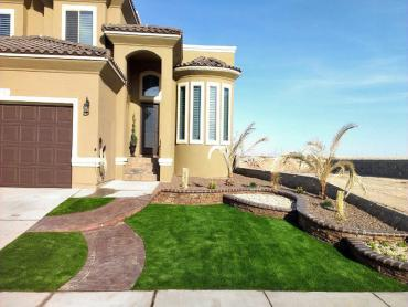 Artificial Grass Photos: Synthetic Grass Wrigley, Tennessee Home And Garden, Landscaping Ideas For Front Yard