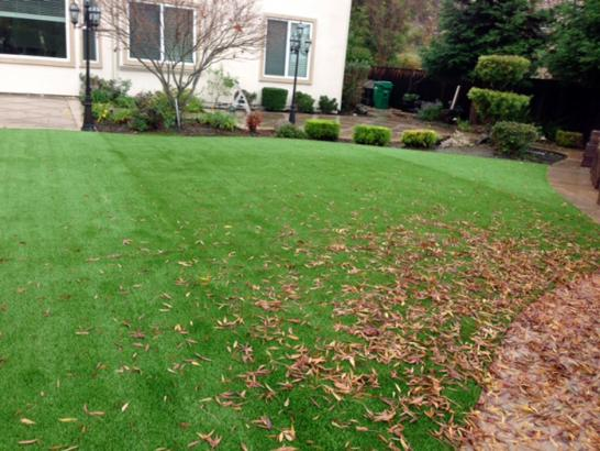 Artificial Grass Photos: Synthetic Turf Big Sandy, Tennessee Backyard Deck Ideas, Backyard Design
