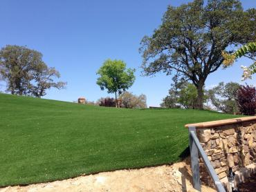 Artificial Grass Photos: Synthetic Turf Huntingdon, Tennessee Landscape Ideas, Front Yard Design