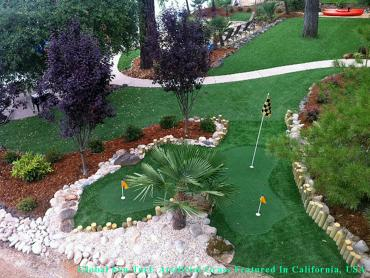 Synthetic Turf Nashville, Tennessee Putting Greens, Backyard Landscaping Ideas artificial grass