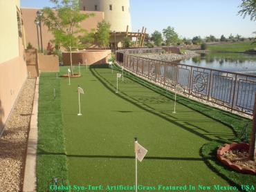 Synthetic Turf Oak Hill, Tennessee Gardeners, Beautiful Backyards artificial grass