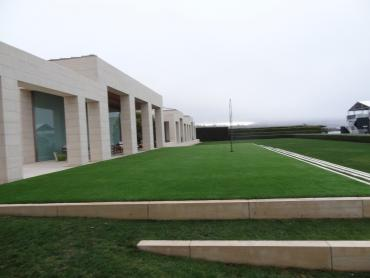 Artificial Grass Photos: Synthetic Turf Supplier Rural Hill, Tennessee Backyard Playground, Commercial Landscape