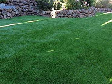 Artificial Grass Photos: Synthetic Turf Vonore, Tennessee Lawns, Backyard Landscaping Ideas