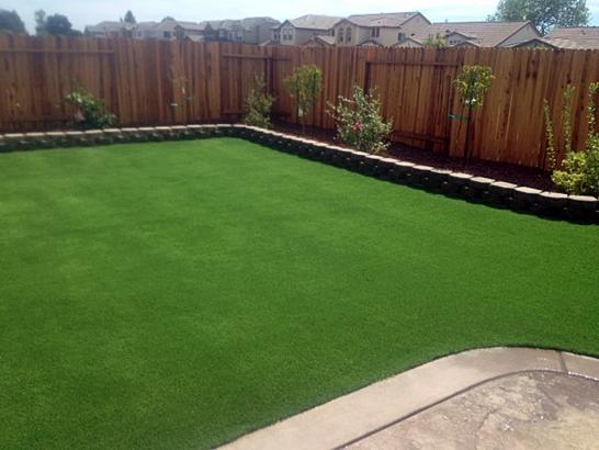Turf Grass Lafayette, Tennessee Landscape Rock, Backyard artificial grass
