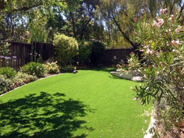 Artificial Grass Photos: Turf Grass Manchester, Tennessee Backyard Playground, Backyards