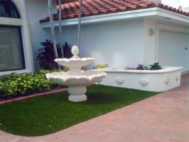 Artificial Grass Photos: Turf Grass Shelbyville, Tennessee Landscaping, Front Yard Landscaping