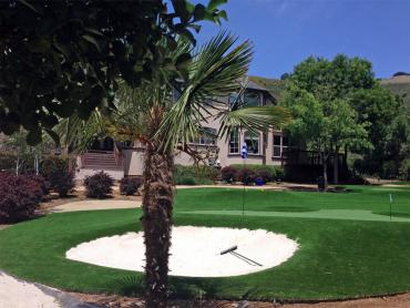 Artificial Grass Photos: Turf Grass Watertown, Tennessee Design Ideas, Front Yard Landscaping